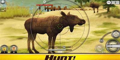 Free Deer Hunting Games